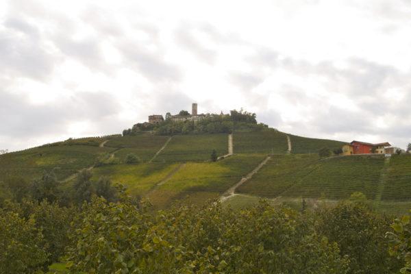 DOCG 巴巴莱斯科葡萄酒